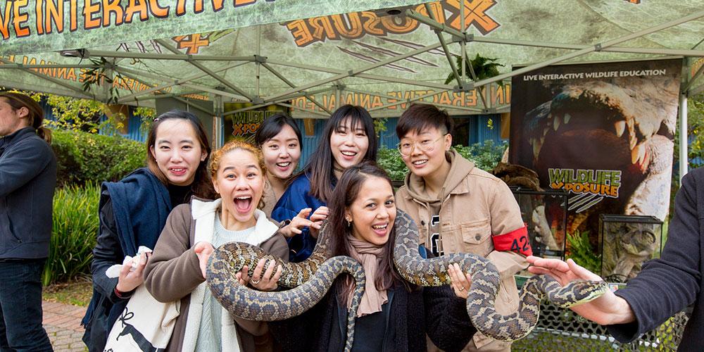 Events, Festivals & Displays Wildlife Presentations